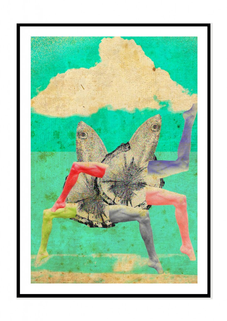 cadre noir- collage barbara penhouet- poissons